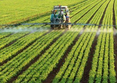 Herbicidas SIPCAM