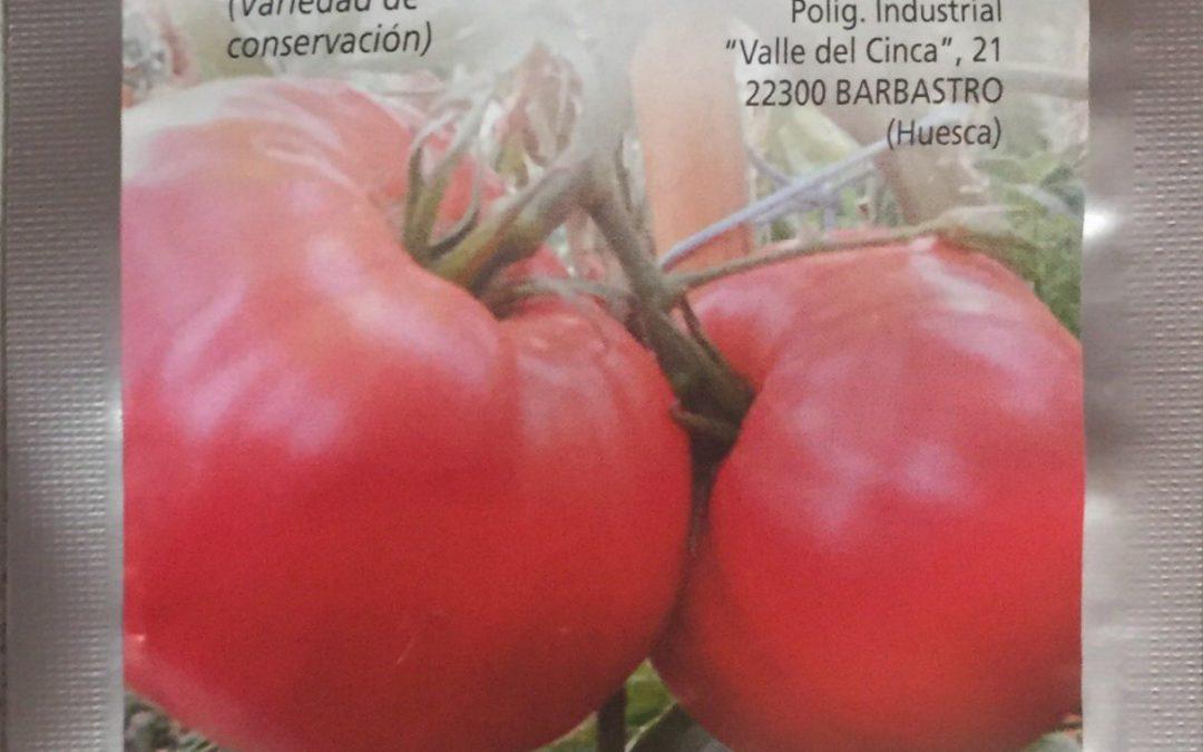 Fiesta del Plantero en Barbastro….1 Mayo 2018