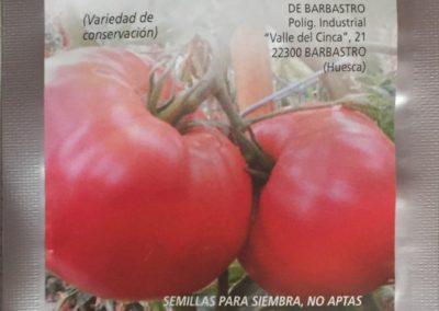 Fiesta del Plantero en Barbastro....1 Mayo 2018