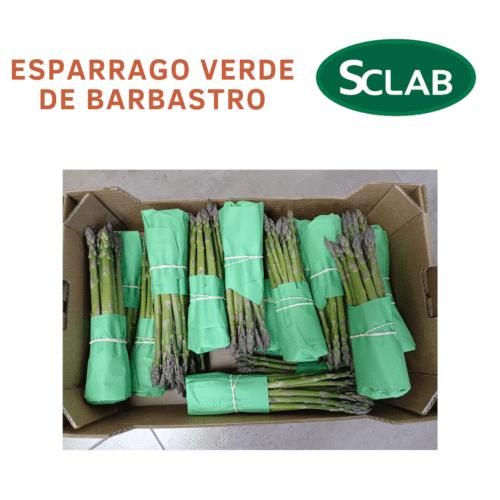 Esparrago Verde de Barbastro